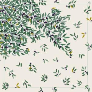 Sacred olive tree